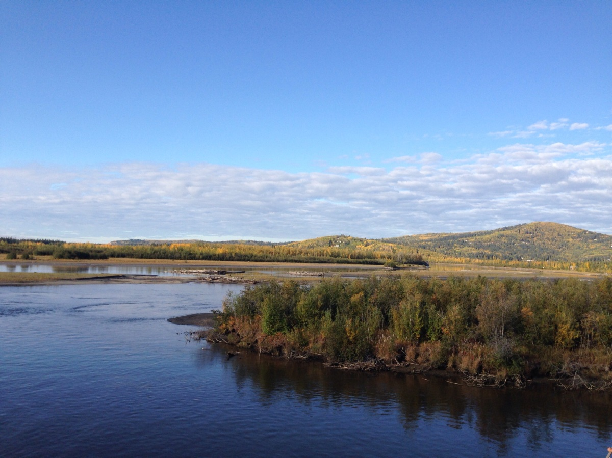 Along the Chena